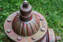 Odgórny widok stary wietrzejący Chicagowski pożarniczy hydrant w trawie zdjęcia stock
