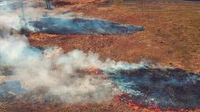 Odgórny widok sucha łąka na ogieniu zbiory wideo