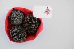 Odgórny widok trzy sosnowego rożka w czerwonej torbie z sezonowym kartka z pozdrowieniami sezonowy wakacyjny tło, pojęcie,/ obrazy royalty free