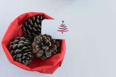 Odgórny widok trzy sosnowego rożka w czerwonej torbie z sezonowym kartka z pozdrowieniami sezonowy wakacyjny tło, pojęcie,/ zdjęcie royalty free