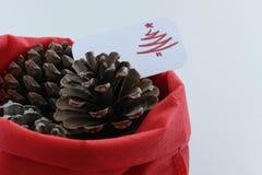 Odgórny widok trzy sosnowego rożka w czerwonej torbie z sezonowym kartka z pozdrowieniami sezonowy wakacyjny tło, pojęcie,/ zdjęcia stock