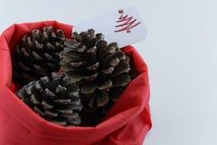 Odgórny widok trzy sosnowego rożka w czerwonej torbie z sezonowym kartka z pozdrowieniami sezonowy wakacyjny tło, pojęcie,/ zdjęcia royalty free