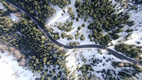 Odgórny widok z wirem na drodze z udziałami drzewa wokoło go, 4k zbiory wideo