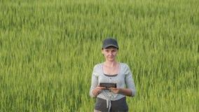 Odg?rny widok kobieta rolnik z pastylk? w r?ka stojakach na zielonym pszenicznym polu obraz stock