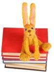 Odgórny widok odczuwany miękkiej części zabawki królik na książkach Fotografia Stock