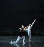 Odita et le prince tombent dans le lac swan de Lakeside-ballet de cygne d'amour-Le Images stock