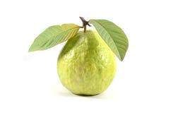 Odizolowywa guava Zdjęcie Royalty Free