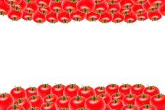 Odizolowywa udziały pomidory na dnie na białym tle i wierzchołku, kopii przestrzeń zdjęcia royalty free