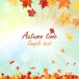 odizolowywająca piękna jesień rama opuszczać istnego biel Zdjęcie Stock