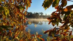 odizolowywająca piękna jesień rama opuszczać istnego biel Zdjęcie Royalty Free