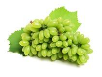 odizolowywająca winogrono świeża zieleń opuszczać biel grapefruits obrazy stock