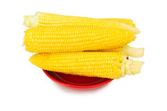 Odizolowywający kukurydzani cobs Fotografia Stock