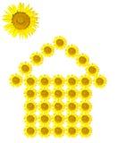 Odizolowywający słonecznikowy domowy wizerunek Obraz Royalty Free