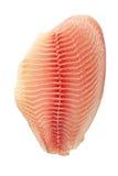odizolowywająca filet ryba Zdjęcia Stock