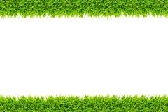 odizolowywająca ramowa trawa Zdjęcie Royalty Free