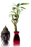 odizolowywający Buddha bambusowy wizerunek Zdjęcie Stock