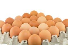 odizolowywający kartonów jajka Fotografia Royalty Free