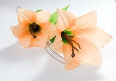 odizolowywający lilly Fotografia Stock