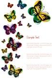 Odizolowywający na biel kolorowi motyle Obraz Stock
