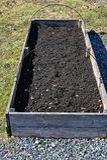 Odla asken med jord som är klar för frö royaltyfri foto