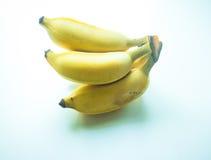 Odla bananen Arkivbild