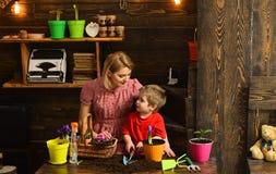 Odla begreppet Modern och sonen odlar blomman i kruka Moder och barn att odla den inlagda blomman Odla jorden arkivfoto