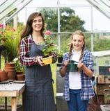 Odla det säsongsbetonade tillväxtbegreppet för den trädgårds- naturen Royaltyfria Bilder