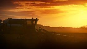 Odla i solnedgång Fotografering för Bildbyråer