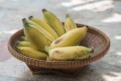 odlad banan Royaltyfri Foto
