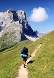 Odle do dele de Gruppo com turista Imagem de Stock