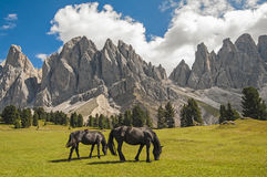 Odle,funes valley,south tyrol,Italy. Alpine landscape on italian dolomites Stock Images