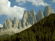 Odle peaks and wood Stock Image