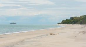 Odległa samotna dziewczyna kontempluje stawiać czoło wodę w czasie odpływu morza zdjęcia royalty free