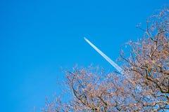 Odległy samolot widzieć przez nagich drzew Zdjęcia Stock