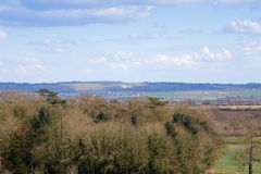Odległy widok Whipsnade Biały lew Bedfordshire Anglia Obrazy Royalty Free