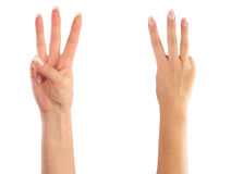 odliczające żeńskie ręki Obrazy Stock