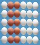 Odliczająca rama z jajkami Obraz Royalty Free