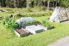Odlingaskar och grönt hus i en trädgård Arkivbild