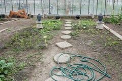 Odlingslottar i ett växthus Arkivbild