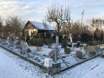 Odlingslottar i snöig vinter Royaltyfria Bilder
