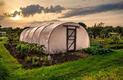 Odlingslottar på solnedgången - plast- växthus Arkivbilder