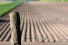 odlingsmark Fotografering för Bildbyråer