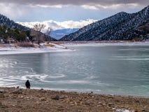 Odludna postać na brzeg Zamarznięty jezioro Fotografia Royalty Free
