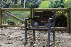 Odludny krzesło w parku blisko do jeziora w jesieni Zdjęcie Royalty Free