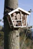 Odludny pszczoła hotel obraz royalty free