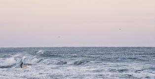 Odludny surfingowiec Zdjęcia Stock