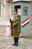 Odmienianie Ceremonialna elita piechota blisko Buda kasztelu w Budapest zdjęcie stock