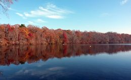Odmienianie kolory przy jesienią Fiszorka staw Nowy Jork fotografia stock