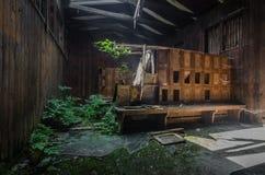 Odmienianie pokoje w zaniechanej lasu skąpania panoramie fotografia royalty free