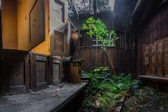 Odmienianie pokoje z rośliny panoramą zdjęcia stock